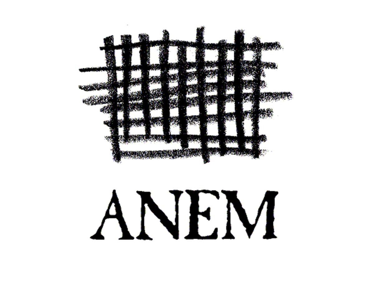 anem-logo-1.jpg