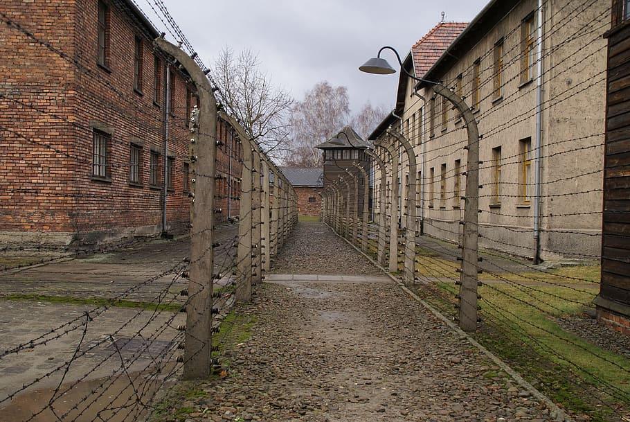auschwitz-concentration-camp-second-world-war-war.jpg