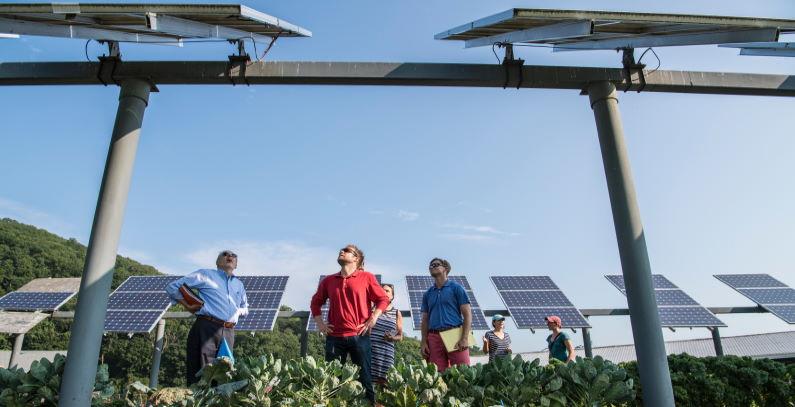 Domacinstva-u-Grckoj-solarne-elektrane-100-megavata