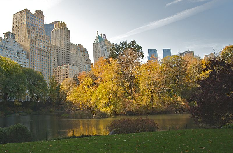 800px-Central_Park_during_Autumn_NYC.jpg