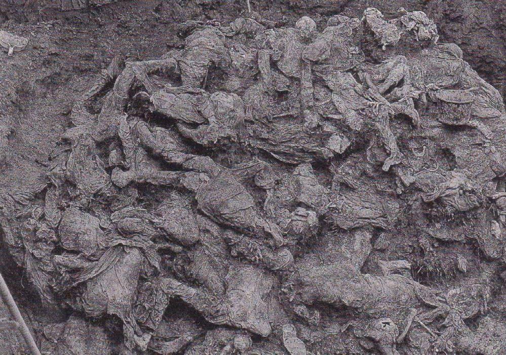 Branjevo_Military_Farm_Grave_Exhumation.jpg