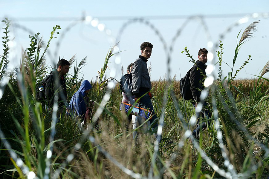 Migrants_in_Hungary_2015_Aug_015.jpg